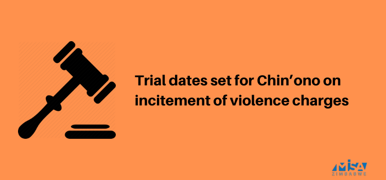 Trial dates set for Chin'ono on incitement of violence charges