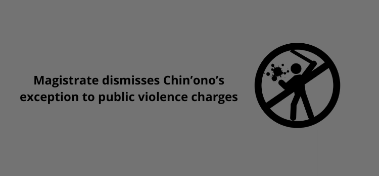 Magistrate dismisses Chin'ono's exception to public violence charges